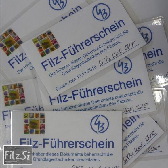 2016.11 Filzführerschein 2
